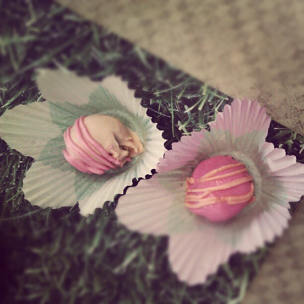 Yummy cake bites from my new sis-in-law's bridal shower! yummmm and preeetttyyyy