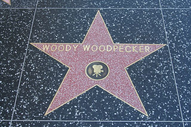 In 1990 Woody Woodpecker got a Star On The Hollywood Walk Of Fame