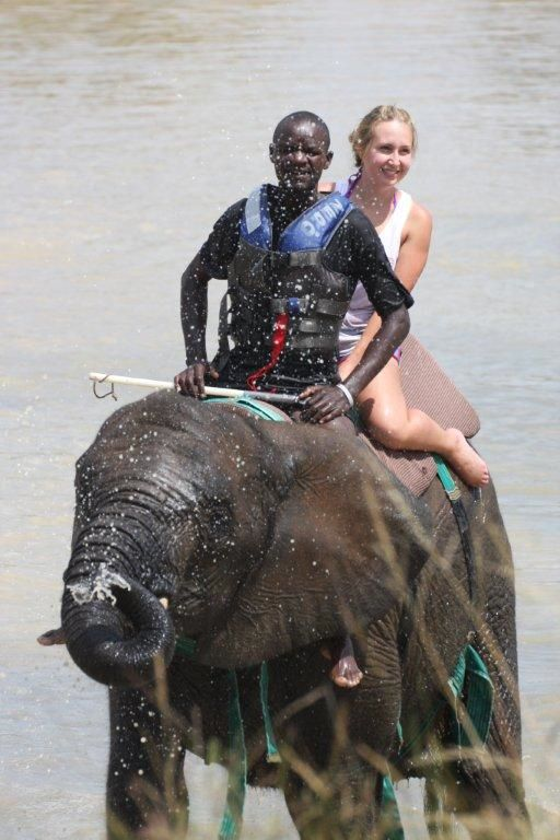 Adventures With Elephants. Bela Bela. Thaba Meetse, Limpopo, ZA. Can't wait!!!