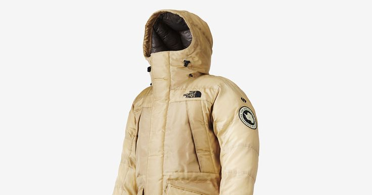 To make this golden coat, The North Face teamed up with Spiber, a Japanese company making synthetic spider silk.