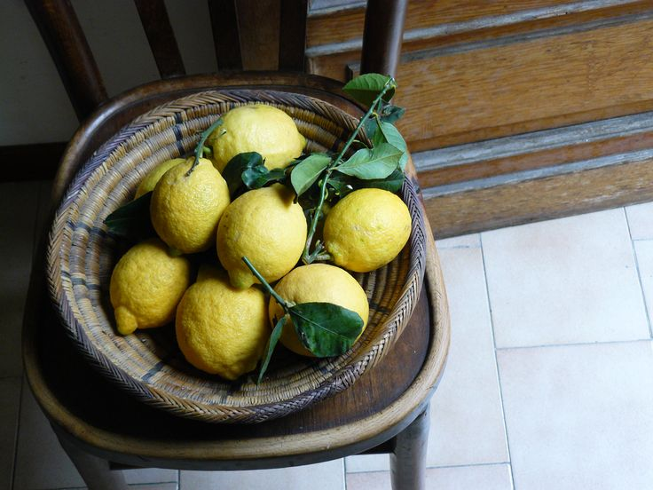 sicilian lemons - Google Search