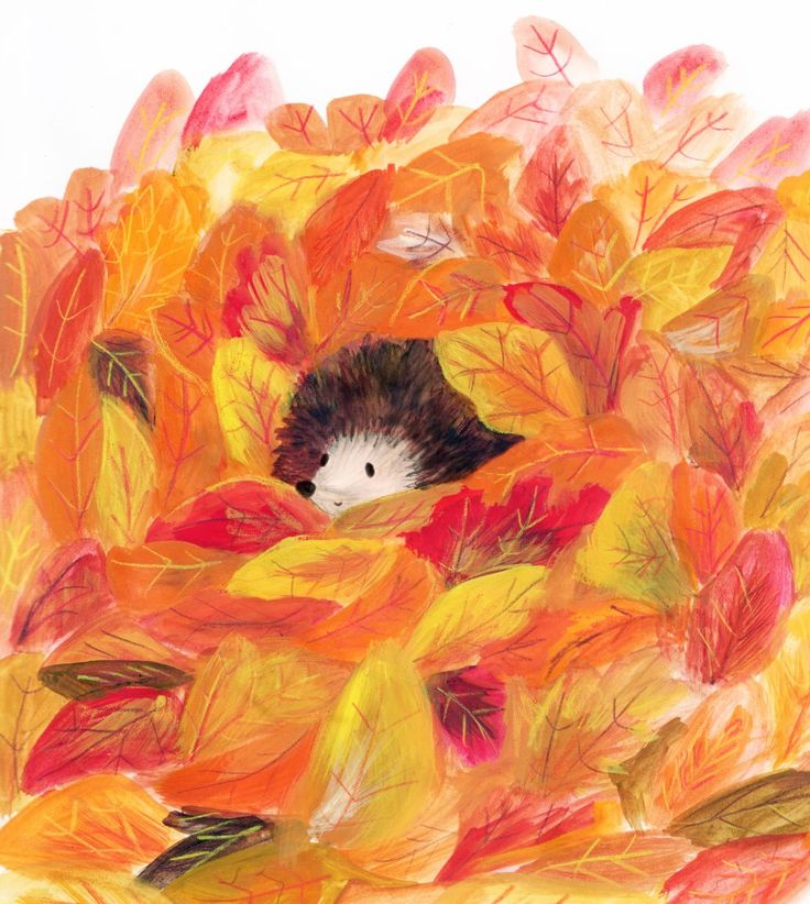 Autumn hedgehog - Lucy Dillamore