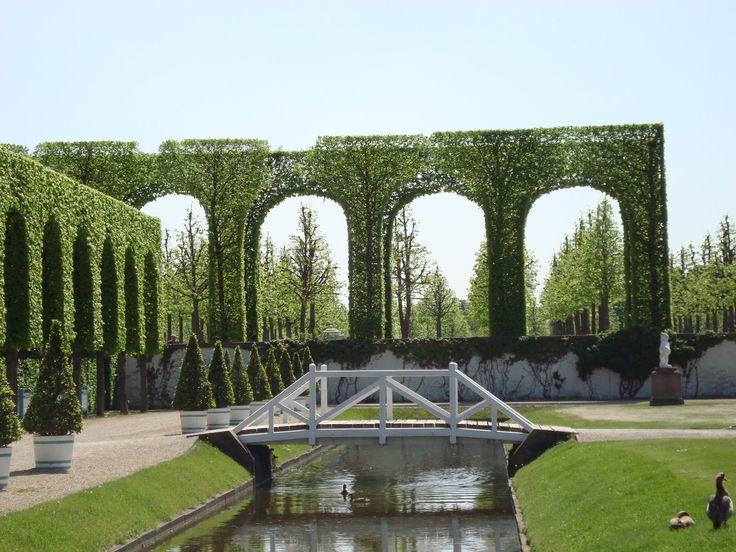 Tight. Trees. Schwetzingen Palace Gardens, Germany.