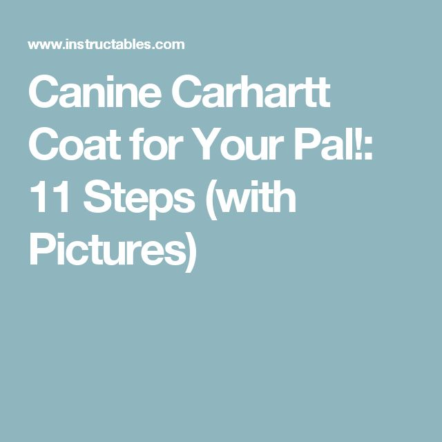 Canine Carhartt Coat for Your Pal!: 11 Steps (with Pictures)