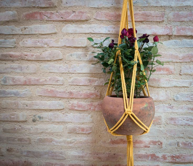 Suspensión para plantas en macrame colgador de plantas en