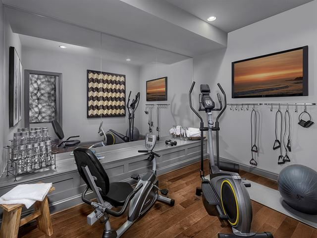 Small but very nice home gyms saunas spas