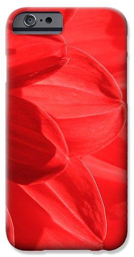 Dahlia IPhone 6s Case for Sale by Sverre Andreas Fekjan.  Protect your iPhone 6s…