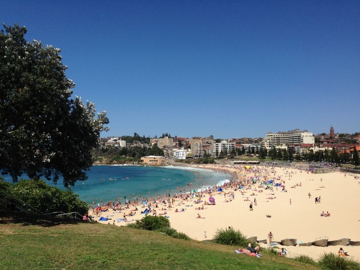 Coogee Beach, Sydney - by Funky Biology