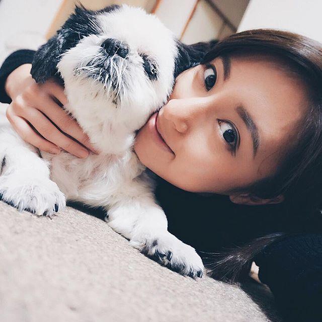 愛しのvivi君15歳。♂ 親バカでもいいの 世界で一番可愛い子だと思ってるから。 片目は義眼。後ろ足は殆ど歩けない。お漏らしもしちゃうね。 でも一番可愛い。宇宙一だと思ってる。 大好きなんだから。 やっとひと段落。さあ寝ましょ🐾 #おやすみんみんぜみ #福岡 . . . #親バカ部 #愛犬 #犬バカ部 #大好き #犬が好き #シーズー #パグじゃないよ #白黒シーズー #シーズー大好き部 #ふわもこ部 #ワンコ #動物好き #お気に入り #おやすみ #おはよう #iLovedogs #shitzu #blackandwhite #instadogs #animallover #lovestagram #mylove