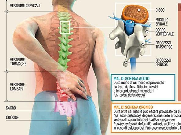 Ms foro de dolor de espalda