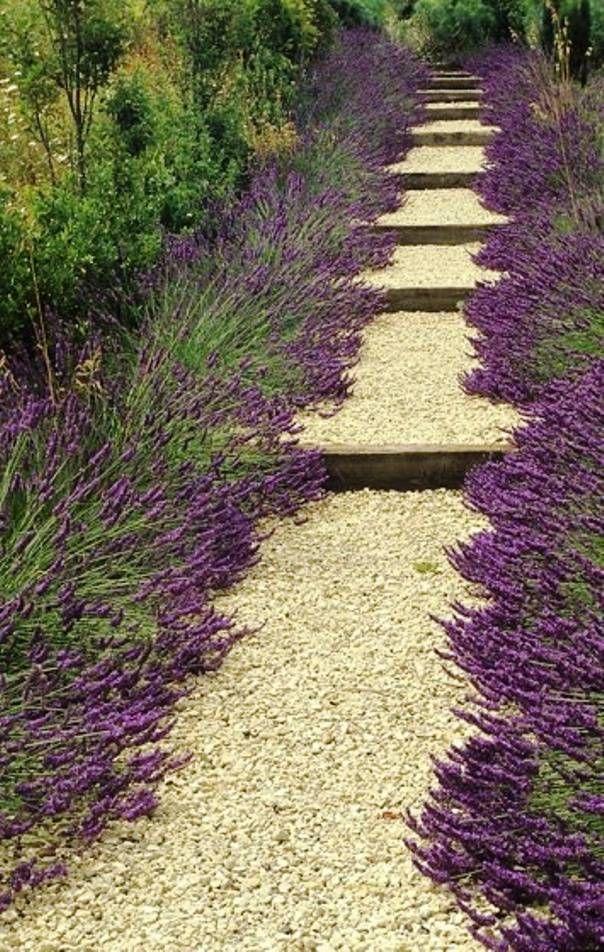 M s de 25 ideas incre bles sobre camino de grava en - Gravas para jardin ...