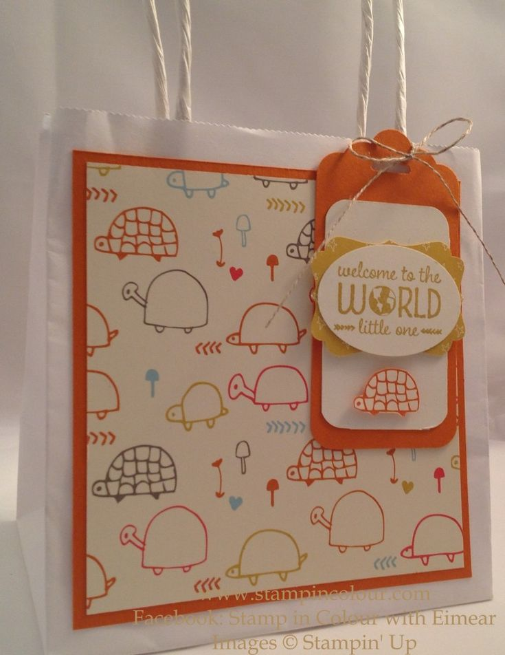 Eimear Carvill www.stampincolour.com Stampin Up Sweet lil' ones gift bag Using Sweet Lil' Things DSP