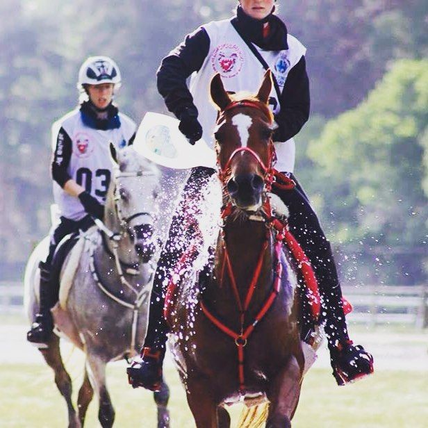 'In my sport, to complete is to win' check out #endurance rider Charlie Chadwick's blog online now! #bigyearbiggoals