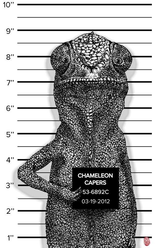 Chameleon Capers Art Print