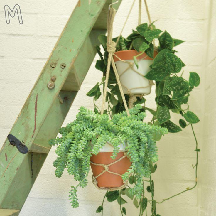 Een hangende tuin voor in huis! Decoreer eerst een leuk patroon op je pot met verf. Daarna knoop je een netje om de pot heen. Maak een leuke set van 2 potten die je bij elkaar kunt op hangen. Helemaal hip!