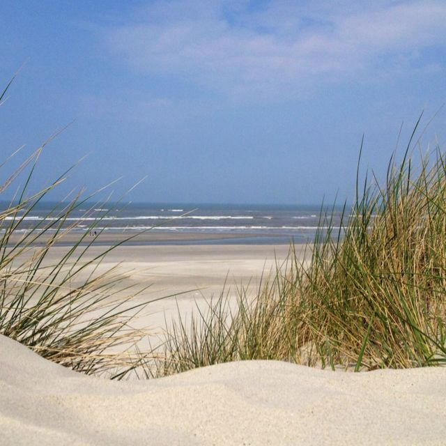 Ameland - Wadden Island -The Netherlands