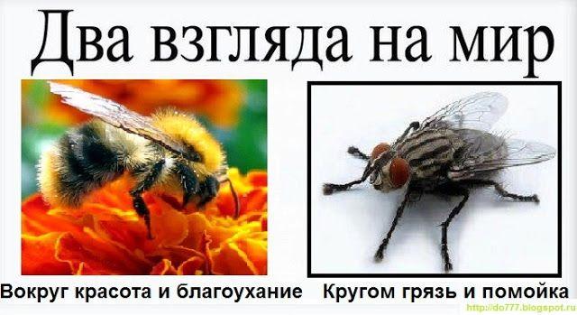 как простить обиду http://www.fakt777.ru/2013/01/Kak-ne-zataivat-obidy-i-proshchat.html