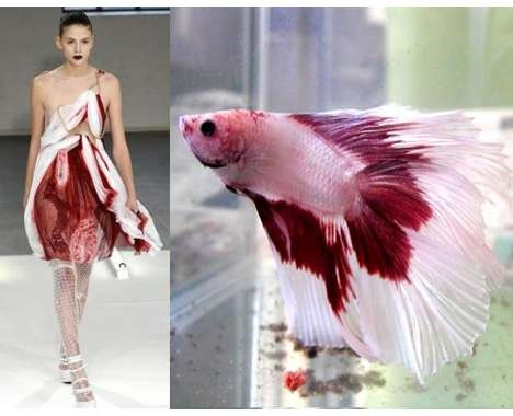 Nature-Inspired Fashion Collections