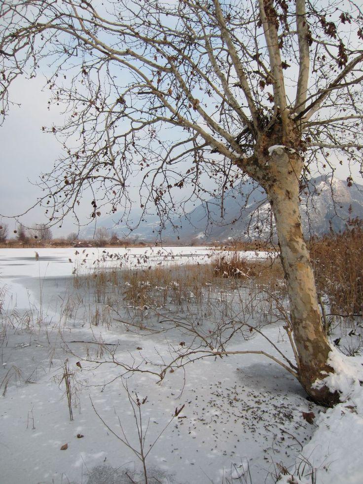 Torbiere lake Iseo - Brescia