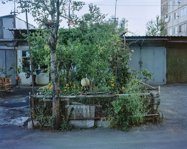 Feature / Speaking in a loud voice / The Gardeners by Jan Brykczynski | Sputnik Photos