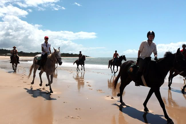 Fancy horse riding on the beach? Click for more info and cheap holiday packages!