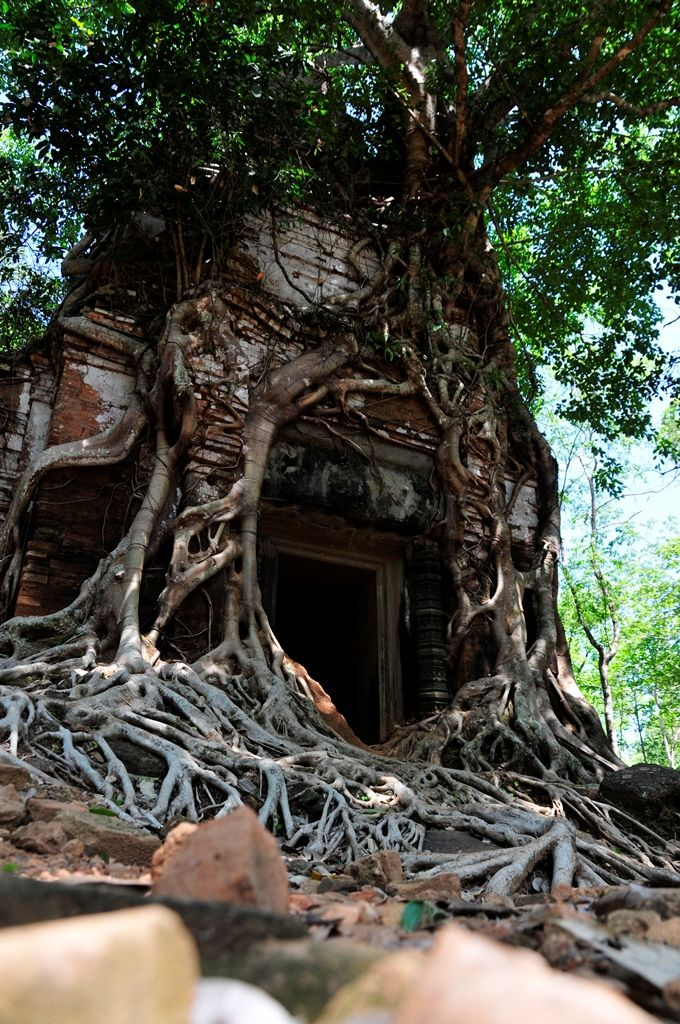 Prasat Pram in Koh Ker complex, Preah Vihear Province, Cambodia