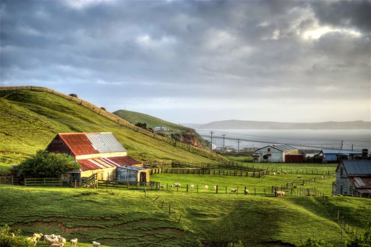Experiential Traveller: Day 31. The last in the series of Feature Down Under: Chatham Islands