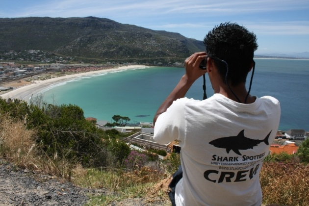 Shark spotter on duty overlooking Fish Hoek Beach