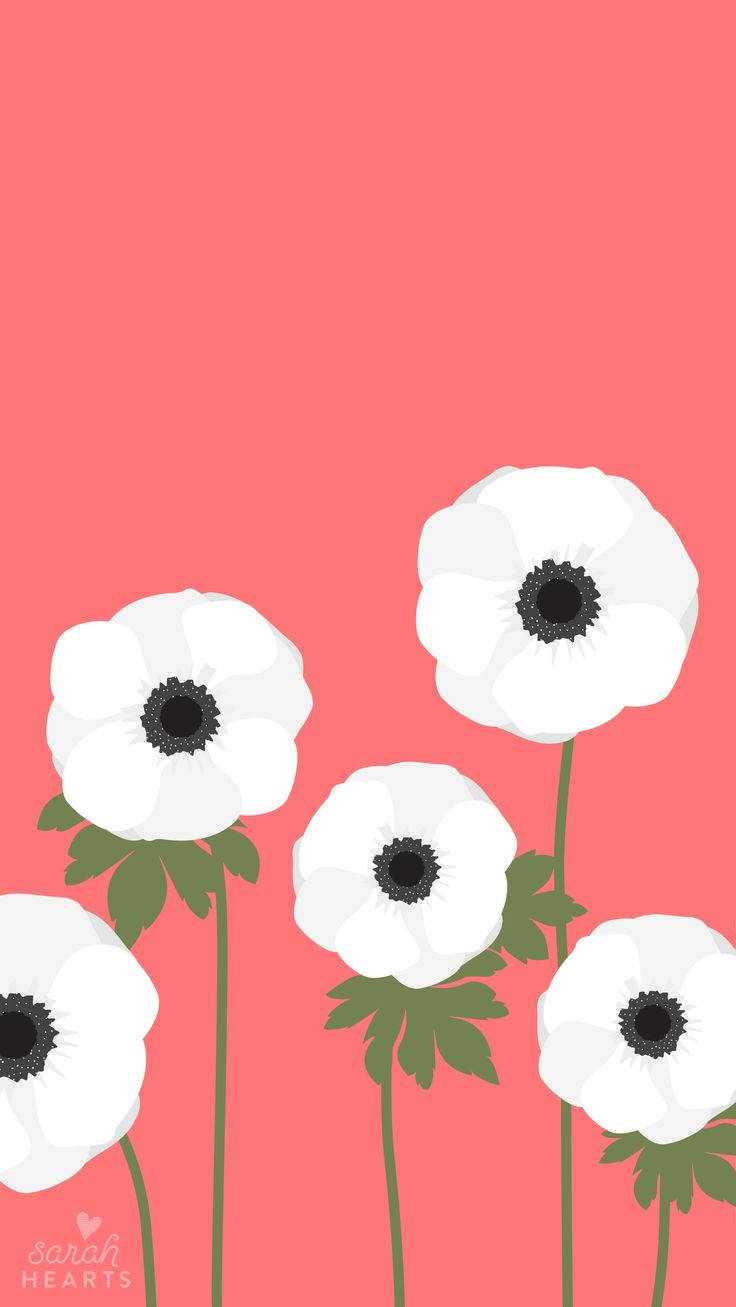 Get ready for spring with this beautiful white anemone wallpaper! Available for phones, tablets and computers with an April 2017 calendar.