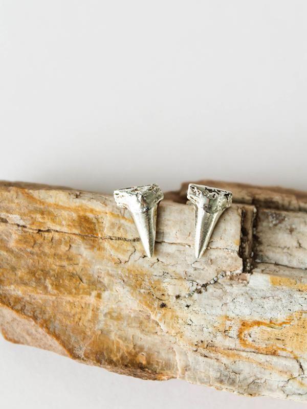 Small Shark Tooth Studs