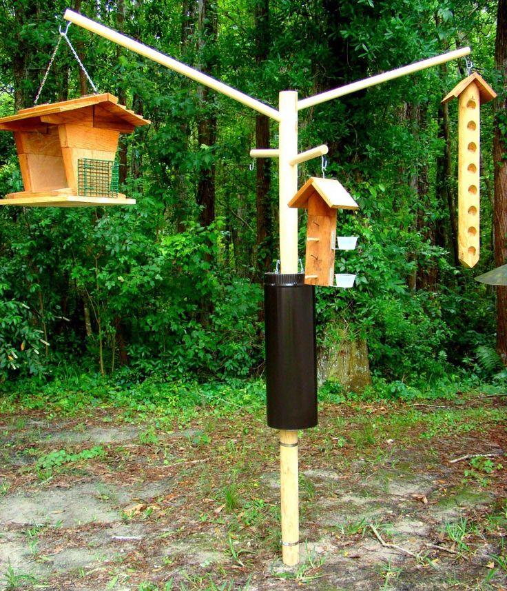 The 25 best bird feeder poles ideas on pinterest wood for Bird feeder pole plans