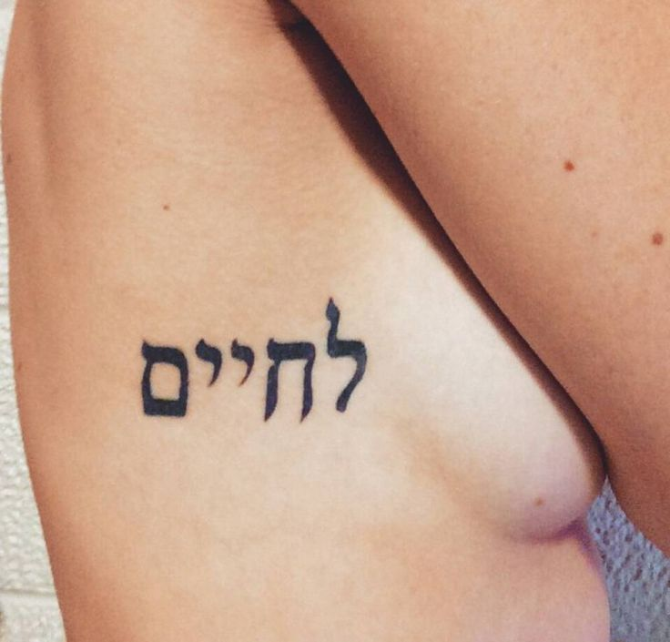 "L'chaim; meaning ""to life"" in Hebrew, on Alexandria Adelman. A reminder to find a little bit of celebration in every day."