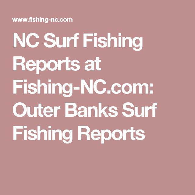 25 best ideas about fishing report on pinterest fly for Nc surf fishing report