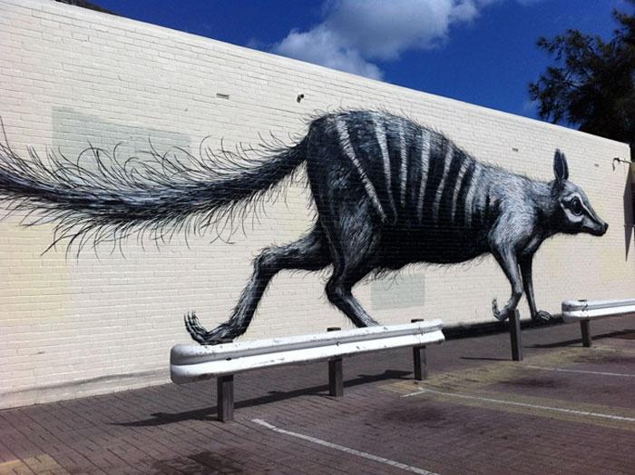 ROA, Belgian Street Artist paints a numbat in Fremantle, Australia.