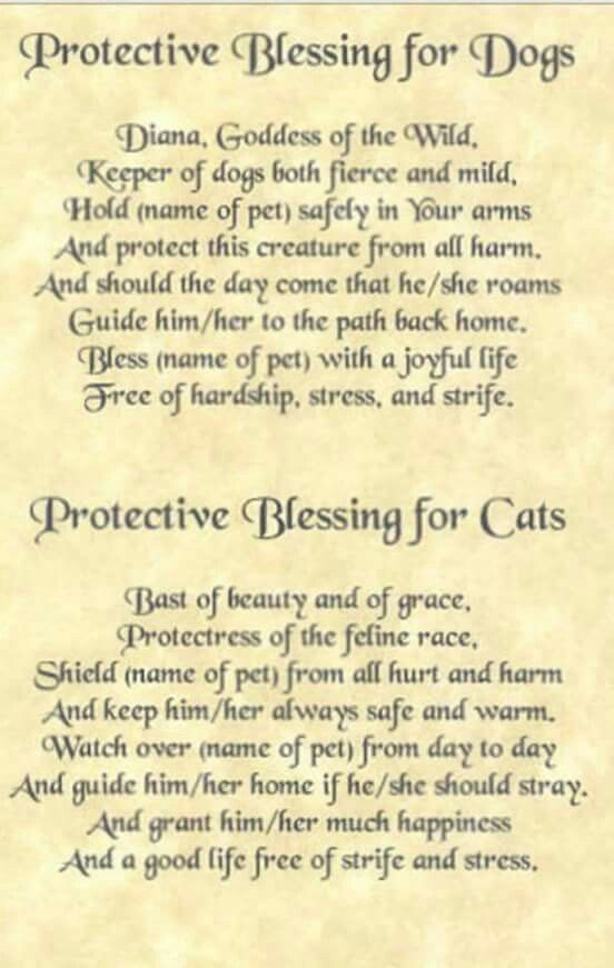 Book of Shadows: #BOS Protective Blessings for Dogs and Cats page.