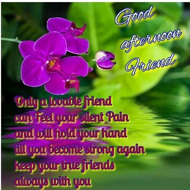 Good Afternoon Friend afternoon good afternoon good afternoon quote good afternoon quotes afternoon quotes good afternoon quotes for friends good afternoon blessings
