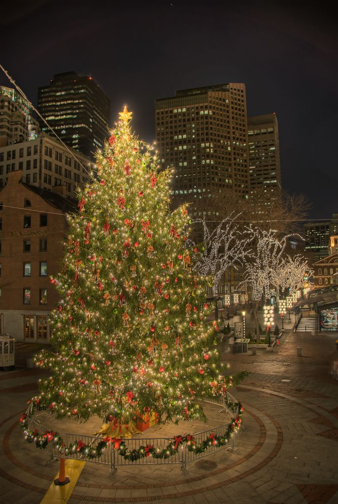 Christmas Tree Scenery Part - 47: A Christmas Tree At Faneuil Hall, Boston
