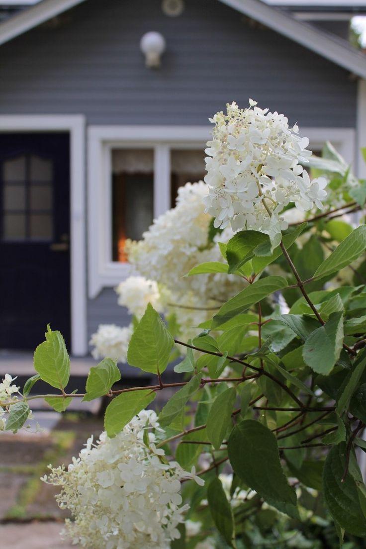 Tervetuloa maison Viehkoon! Rintamamiestalo sai remontissa uuden ulkoverhouksen; harmaa panelointi ja valkoiset ikkunanpuitteet