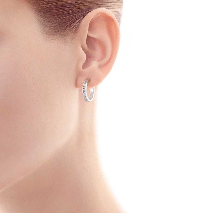 Hoop Earrings Model
