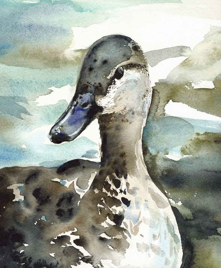 Mama duck watercolor by Amber Alexander