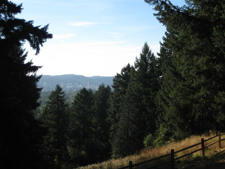 Above the City on Mount Tabor | The Intertwine