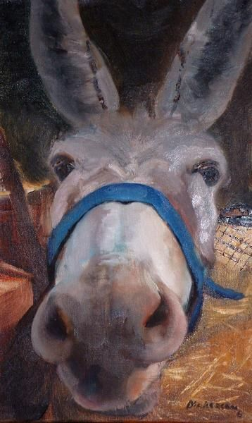 'Quizzy Donkey Snout' by Marlene Dickerson
