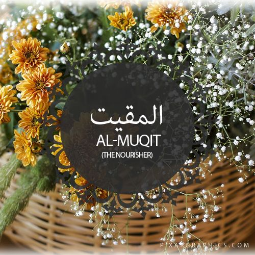 Al-Muqit,The Nourisher,Islam,Muslim,99 Names