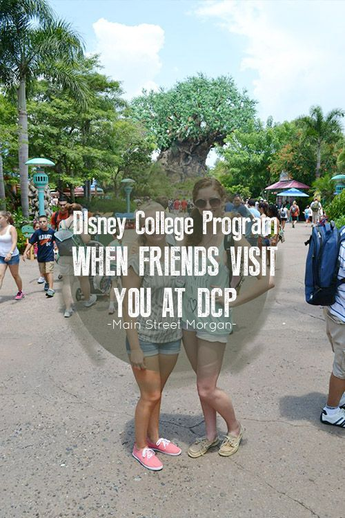 Disney College Program   DCP   Friends   Visitors   Magic Kingdom   Animal Kingdom   Epcot   Hollywood Studios   Disney