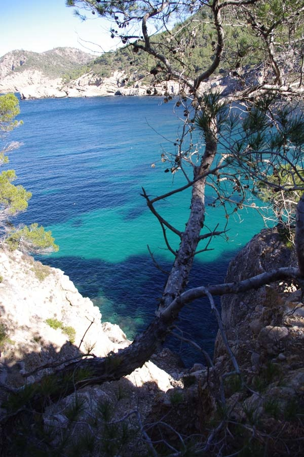 Walking route San Miguel @22.2.2013. #walkinginibiza Pictures by: Liisi Toom  http://liisitoom.com