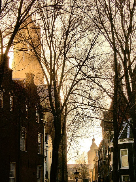 Utereg Me Stadsie. Stunning pic of the Dom Tower in Utrecht. My second home.