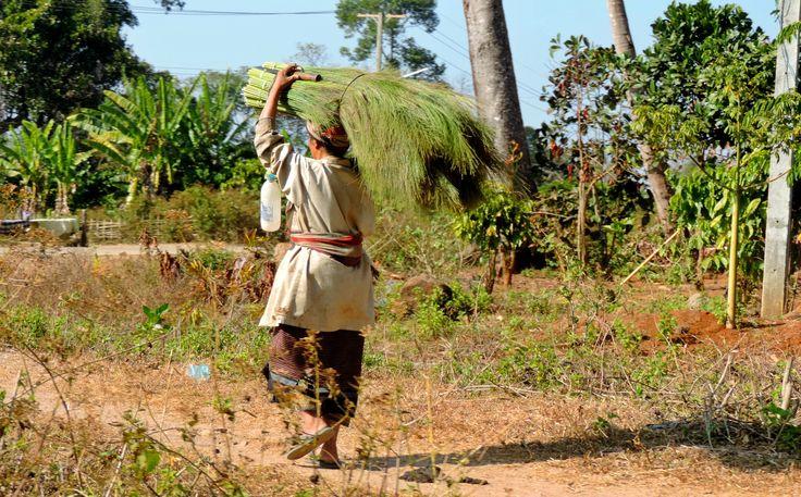 Tips voor de mooiste, verborgen plekken van Laos.