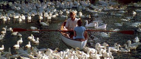 Szerelmünk lapjai /The Notebook/ magyarul beszélő, amerikai romantikus film, 123 perc, 2004 Allie Hamilton Rachel McAdams Noah Calhoun Ryan Gosling
