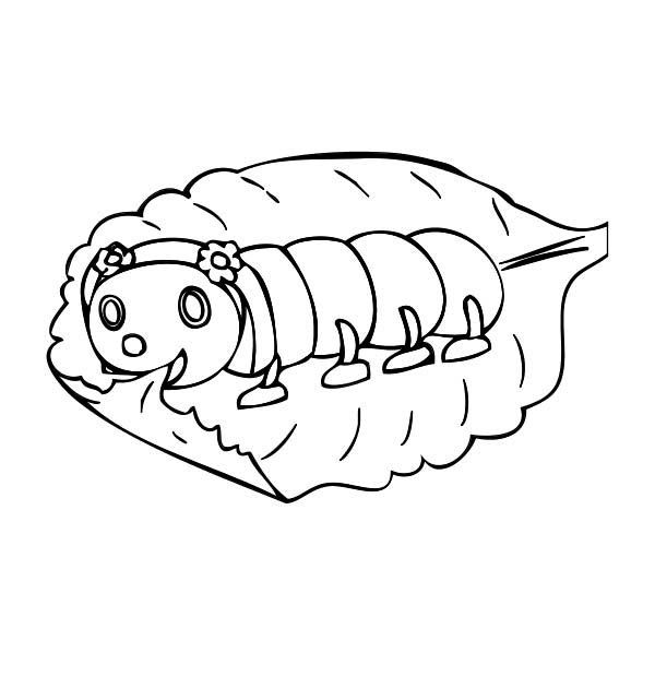 Caterpillars A Baby Caterpillar Eating Leaf Slowly Coloring Page