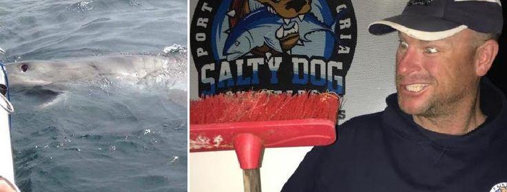 Рыбак отбился от акулы с помощью швабры